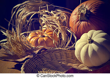 carte, fond, thanksgiving, pumpkins., retro