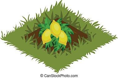 carte, isométrique, tileset, citron, jardin, arbre, -, planté, lit, élément, fruit, dessin animé
