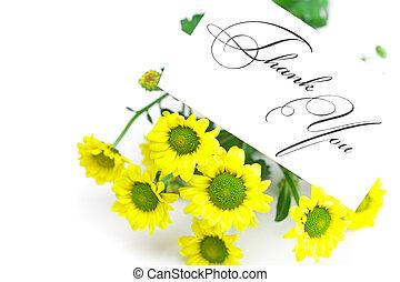 carte, pâquerette, isolé, blanc, remercier, signé, vous, jaune