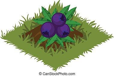 carte, plante, tileset, jardin, -, isométrique, lit, buisson, fruit, baie, dessin animé