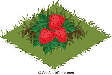 carte, plante, tileset, jardin, -, isométrique, lit, fraise, buisson, fruit, dessin animé