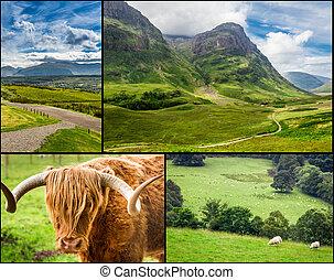 carte postale, été, pays montagne, ensoleillé