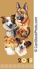 carte postale, breeds-2, différent, chiens