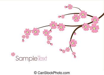 carte postale, japonaise, branche