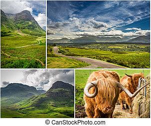 carte postale, montagnes, ecosse, été
