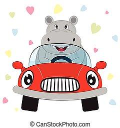 carte voeux, mignon, hippopotame, conduire voiture, sur, a, cœurs, arrière-plan.