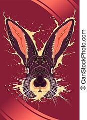 cartel, conejo,  animal