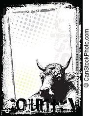 cartel, vaca, plano de fondo