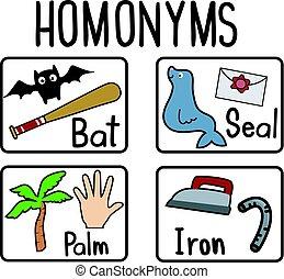 cartes, flash, homonyms