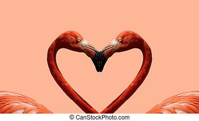 cartolina, giorno valentine, con, rosa, fenicotteri, su, il, fondo, di, cuore