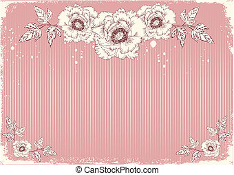 cartolina, peonies, fiori
