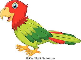 carton, macaw, oiseau