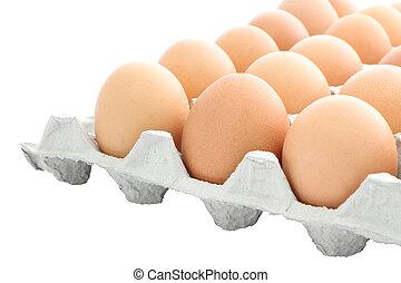 Carton raw eggs box on white background.