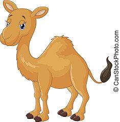 cartone animato, cammello