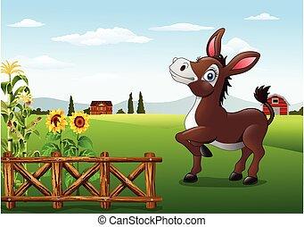 cartone animato, felice, asino, con, fattoria, indietro