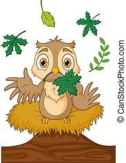 cartone animato, gufo, nido, legno