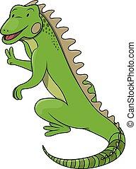 cartone animato, illustrazione, iguana