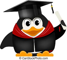 cartone animato, immagine, di, uno, giovane, giovane, pinguino, laureato, università, in, uno, berretto, con, uno, diploma, su, uno, bianco, fondo., vettore, illustrazione