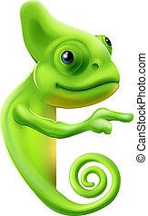 cartone animato, indicare, camaleonte