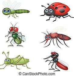 cartone animato, insetto, collezione, set