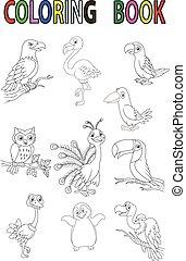 cartone animato, libro, uccello, coloritura