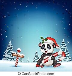 cartone animato, panda, divertente, seduta