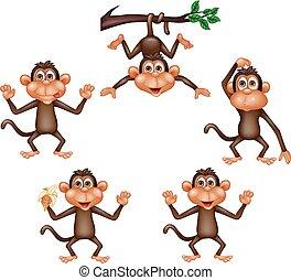 cartone animato, scimmia, collezione, set