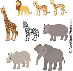 Ippopotamo giraffa illustrazione vettoriale cerca clip - Cartone animato giraffe immagini ...