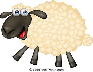 cartone animato, sheep, carino