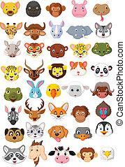 cartone animato, testa animale, collezione, set