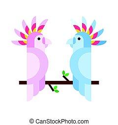 cartone animato, tropicale, pappagallo, animale selvaggio,...