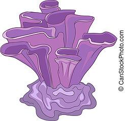 Cartoon Alga - Cartoon Ocean Object Alga Isolated on White...