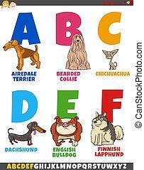 cartoon alphabet collection with dog breeds