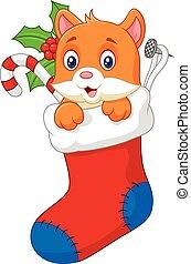 Cartoon animal cat in the sock chri - vector, adorable, ...