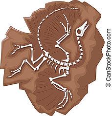Cartoon Archeopteryx fossil - Vector illustration of Cartoon...