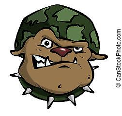 A mean bulldog in an army or military helmet.