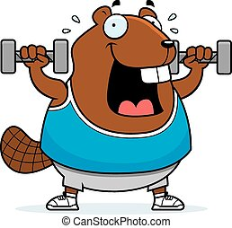 Cartoon Beaver Dumbbells