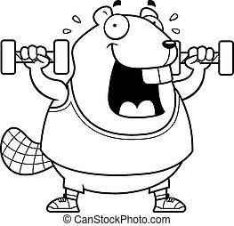 Cartoon Beaver Dumbbells