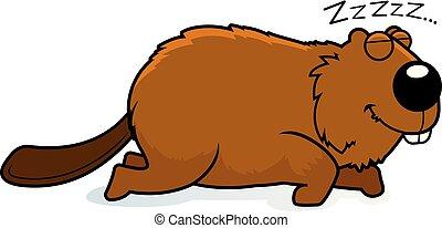 Cartoon Beaver Sleeping