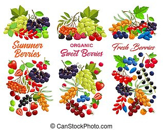 Cartoon berries vector strawberry, raspberry, cherry, black or red currant with blueberry. Bunch of white grape and blackberry, sea buthorn, honeysuckle and bird cherry, black chokeberry fresh berries