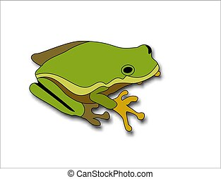 Cartoon big green frog on white background