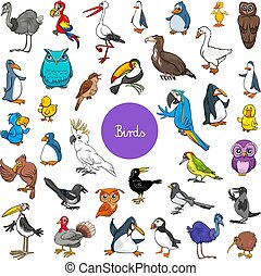 cartoon birds animal characters big set