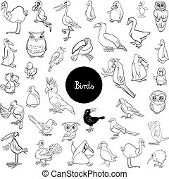 cartoon birds animal characters set color book