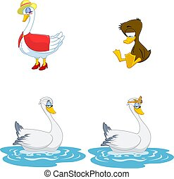 Cartoon Birds Characters. Vector Collection Set