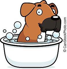 Cartoon Boxer Bath - A cartoon illustration of a Boxer dog...
