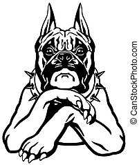 boxer dog - cartoon boxer dog , black and white front view...