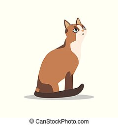 Cartoon brown cat character with blue eyes, light muzzle and...