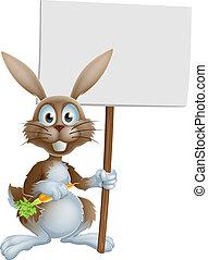 Cartoon bunny rabbit carrot and sig