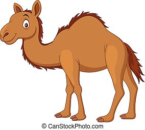 Cartoon camel isolated on white background