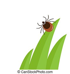 Cartoon character mite in the tall green grass flat vector illustration, mite hiding in the grass, tick-borne mite color icon, danger tick bug in nature grass, color mite illustration in circle, dangerous tick bug icon